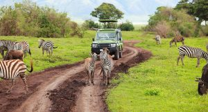 Top 10 Arusha Day Tours